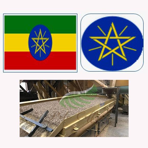 衣索匹亞西達摩G1