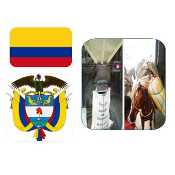 哥倫比亞薇拉